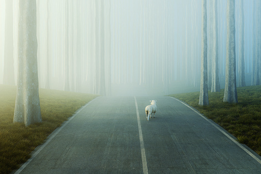 Lost sheep in the middle of the forest road. This is entirely 3D generated image.