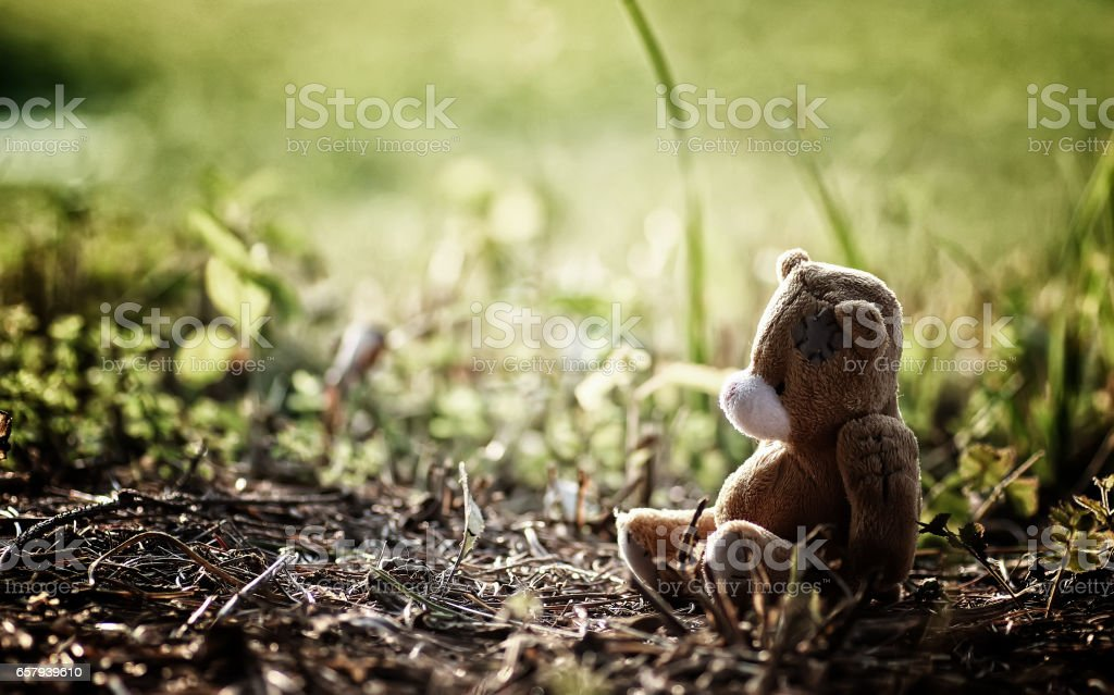 lost toy on the ground stock photo
