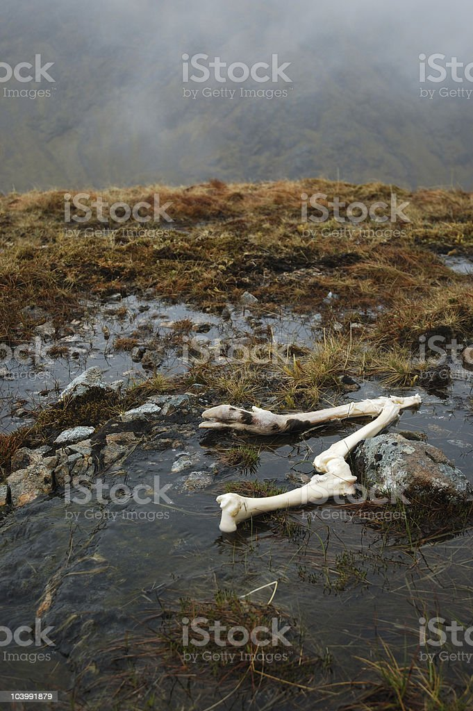Lost Valley royalty-free stock photo