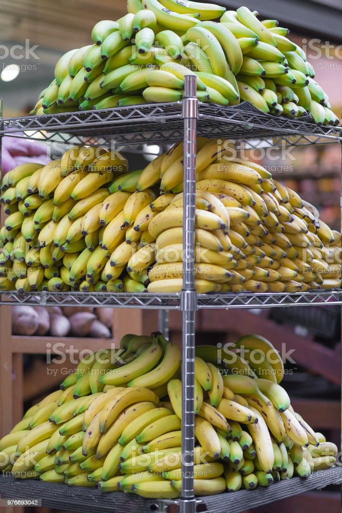A lot of Bananas on a metal rack - Ripe and Unripe stock photo