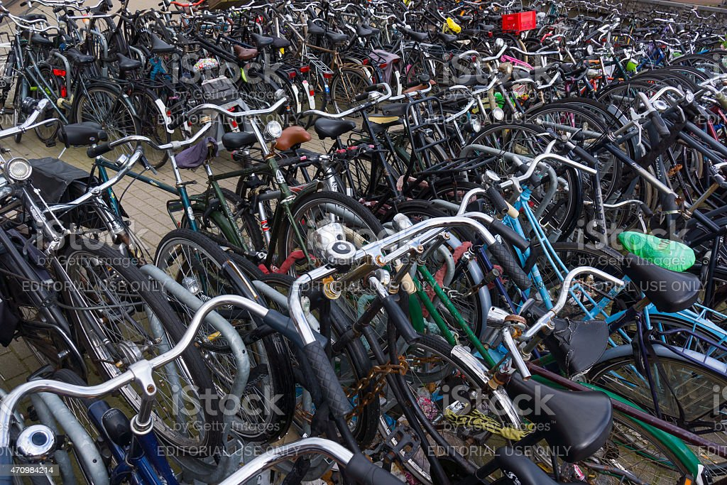 Lot of bikes on the bicycle parking stock photo