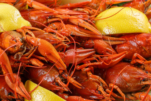 A lot of bright red boiled crawfish with lemon close-up stock photo
