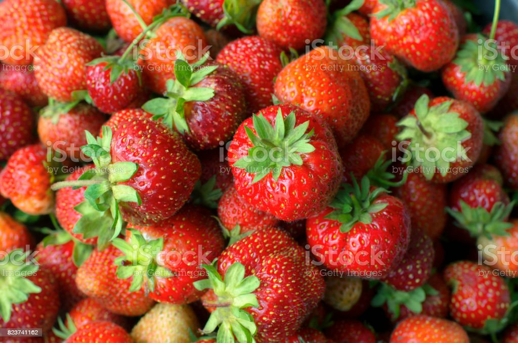 Lot of bright red ripe berries of strawberry stock photo