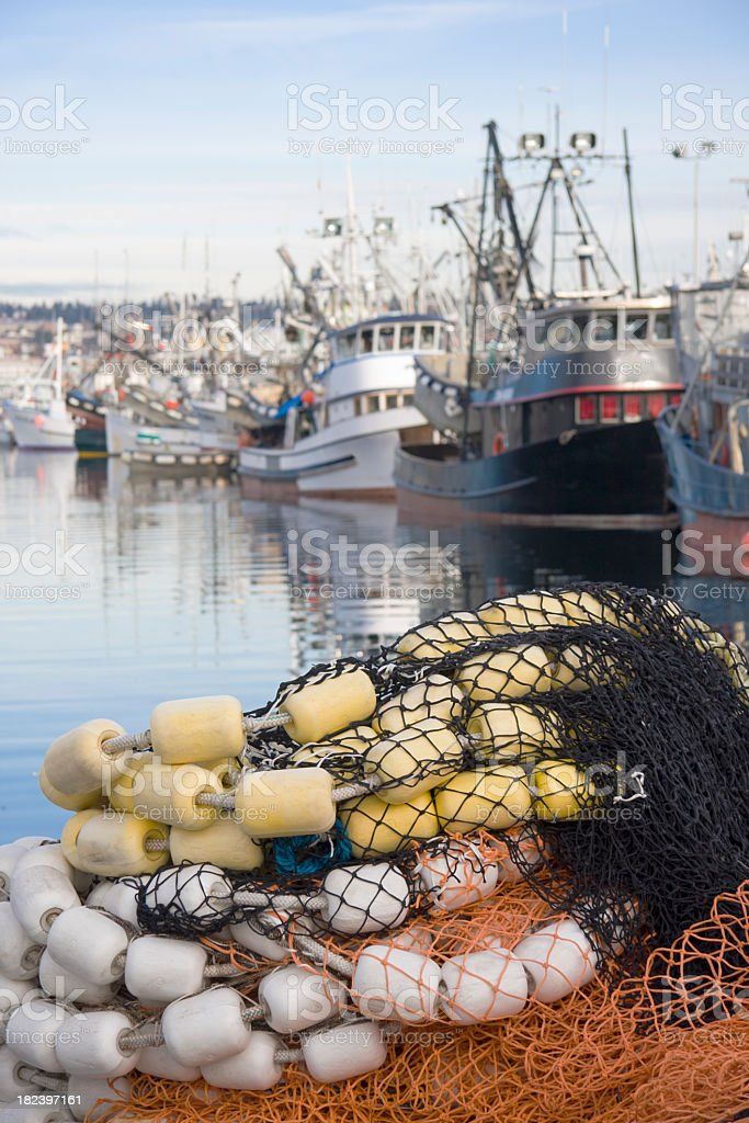 A lot of fishing boats in the port stock photo