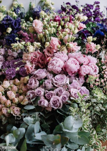 Lot of fresh blossoming flowers at the florist shop picture id918114096?b=1&k=6&m=918114096&s=612x612&h=tokigwffhpjwqxzmlnzxpbwzgwi4khu2zdbyjfqfdkm=