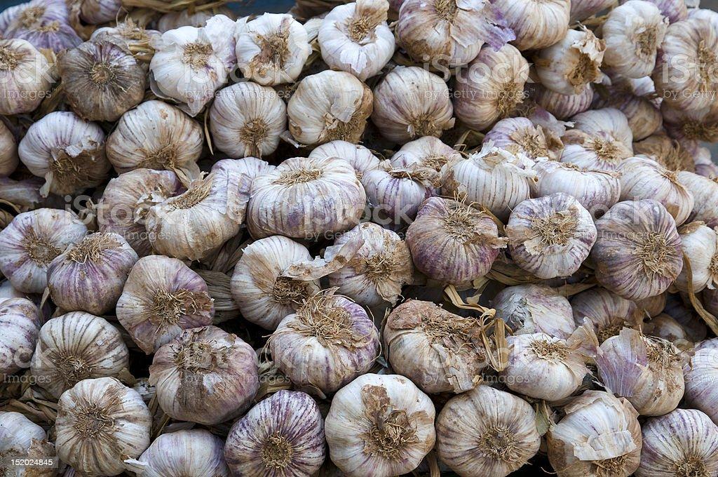 Lot of garlic. royalty-free stock photo