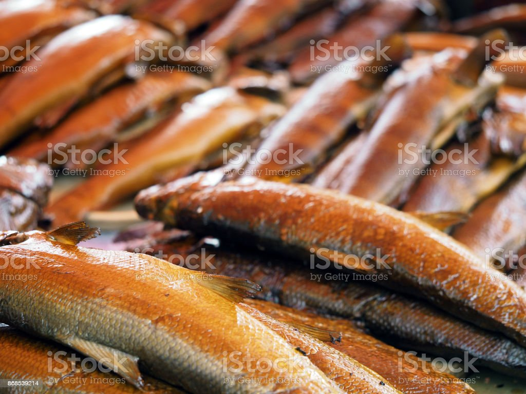 Lot of hot smoked river russian fish. Sander, sander volgensis, acipenser ruthenus, abramis brama, aspius aspius, pelecus cultratus. Delicious natural food background stock photo