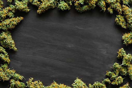 Een Heleboel Marihuana Verse Toppen Van Cannabis Die Veel Onkruid Kopie Spase Kopieruimte Stockfoto en meer beelden van Blad