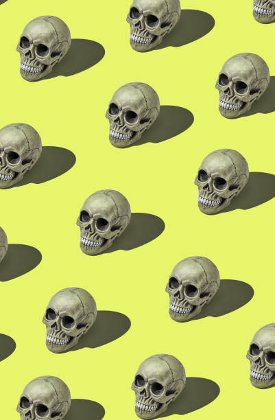 a lot of realistic models of a human skulls with teeth on a yellow background. medical science or halloween horror concept - seitas imagens e fotografias de stock
