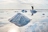 A lot of salt is reflected in the water. A man with a rake produces salt. Beautiful landscape with blue sky