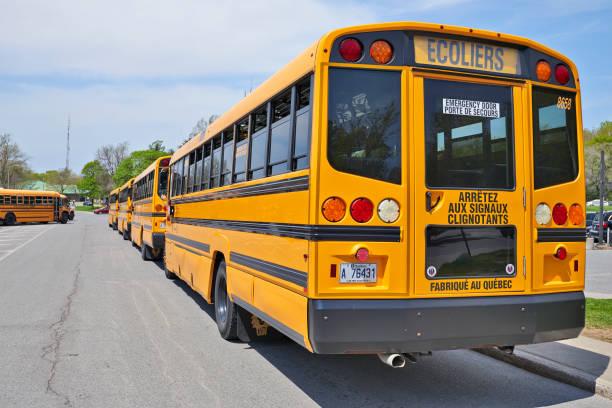 Viele Schulbusse warten auf Kinder – Foto