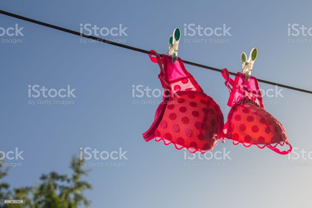 Ð¡lothesline with a pink bra stock photo