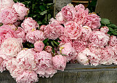 Lots of peonies on a table in  florist's shop. Similar: