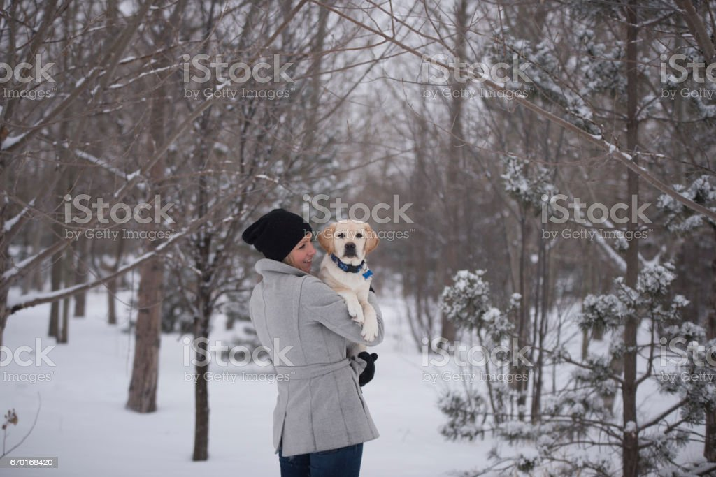 Lots of copy space with puppy looking right at camera and owner embraces him lovingly stock photo