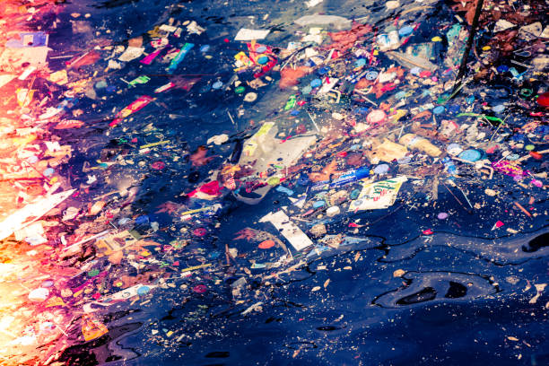 Lots of garbage in sea in display stock photo