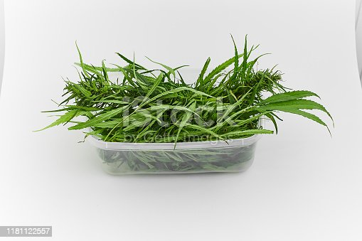 538450883istockphoto Lots of green leaves and cannabis herb marijuana in a plastic container isolated on white background. 1181122557