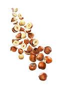 Lots of hazelnuts in flight