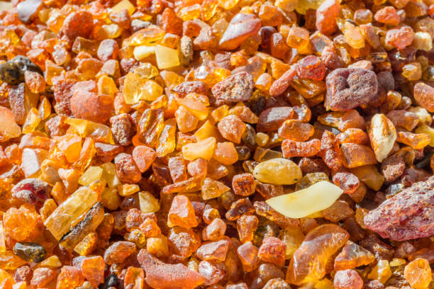 Lots of pieces of natural amber from Baltic Sea. Lots of pieces of natural amber from Baltic Sea. fossilized pitch stock pictures, royalty-free photos & images