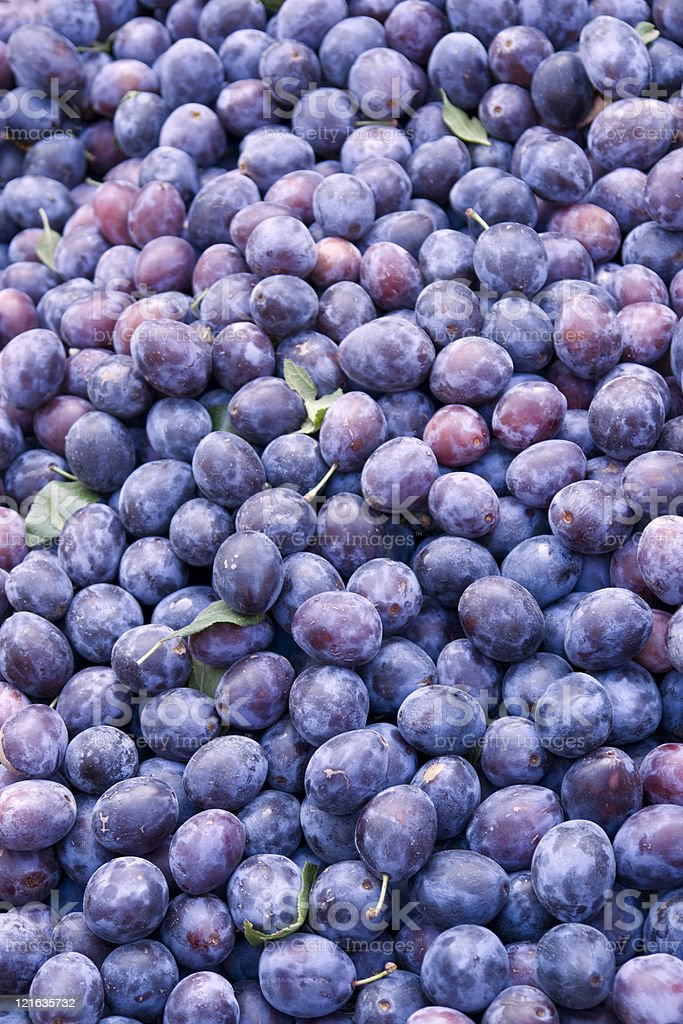 lots of plums royalty-free stock photo