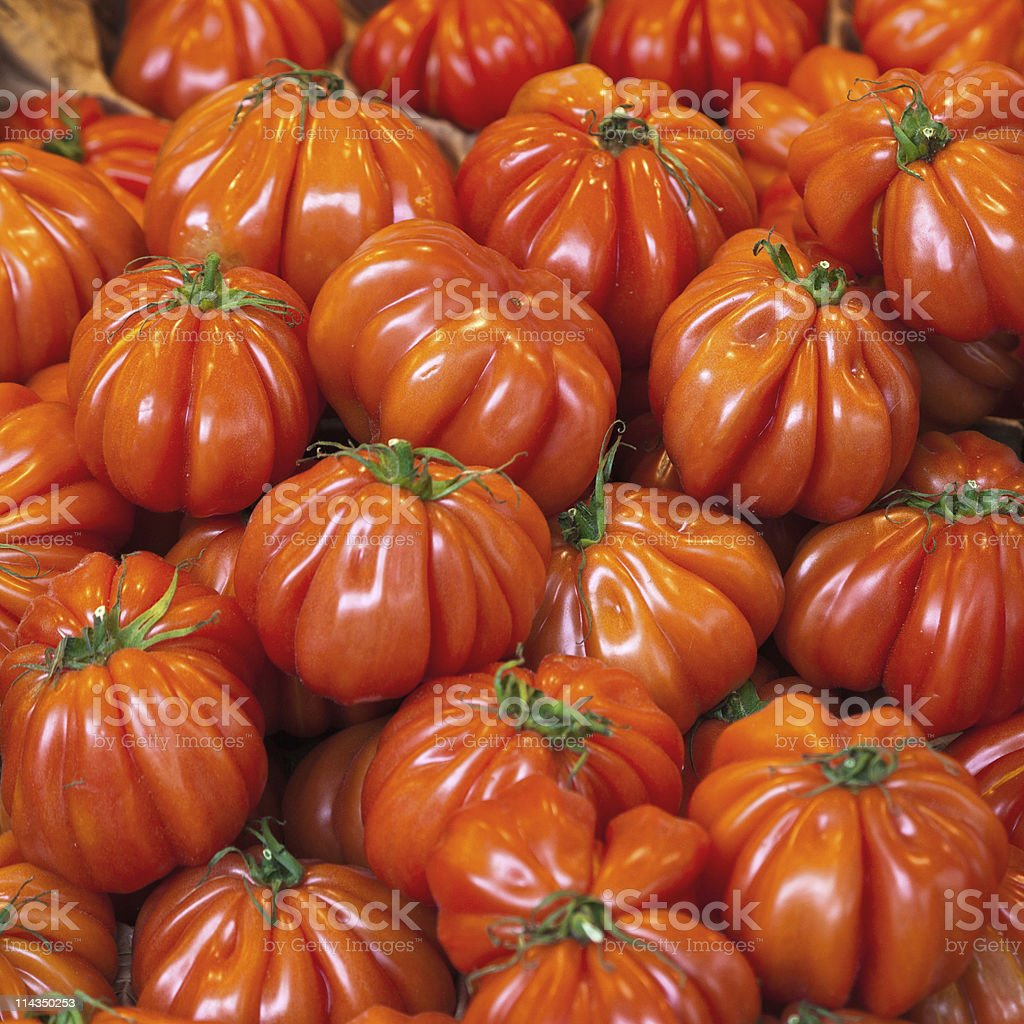 Lots of ripe red tomatoes royalty-free stock photo