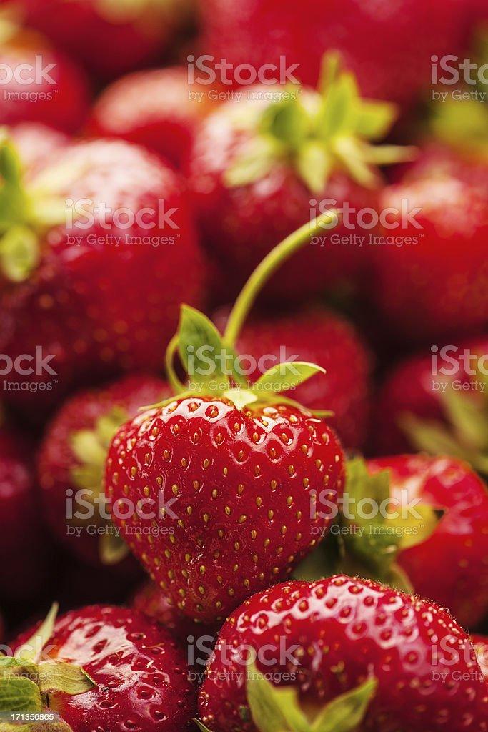 Lots of strawberries stock photo