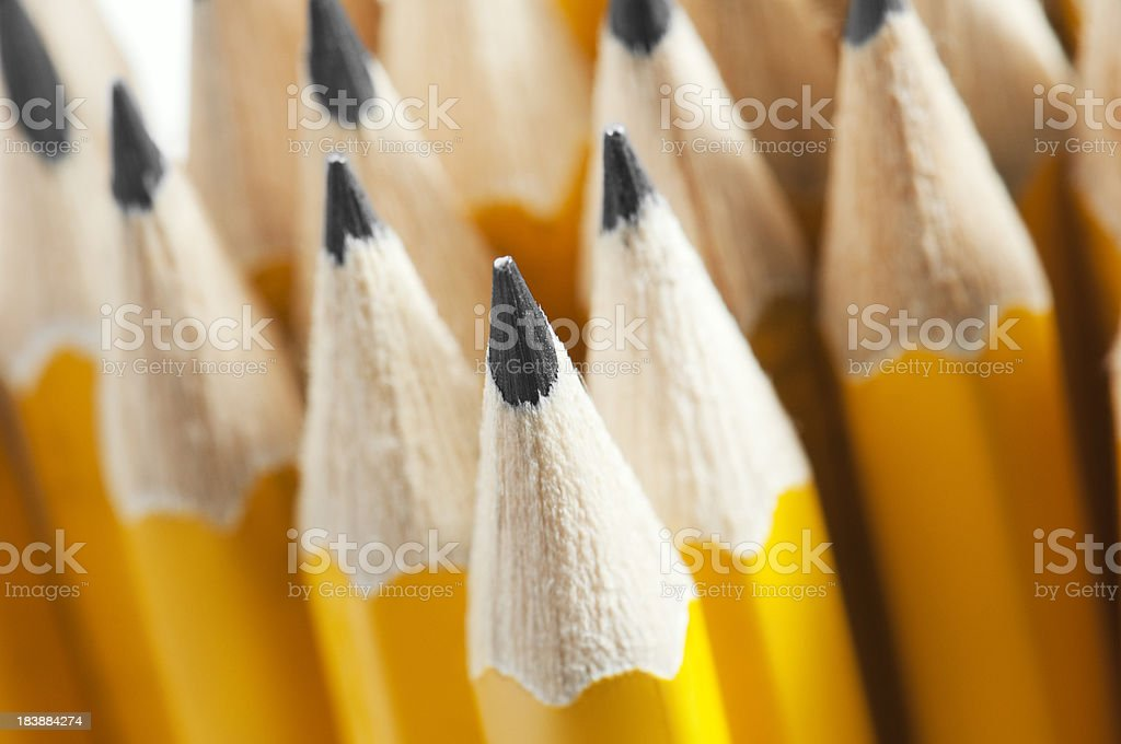 Lots of yellow pencils nib side up with selective focus stock photo