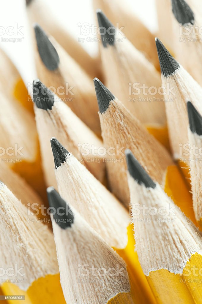 Lots of Yellow pencils standing with their nibs up stock photo