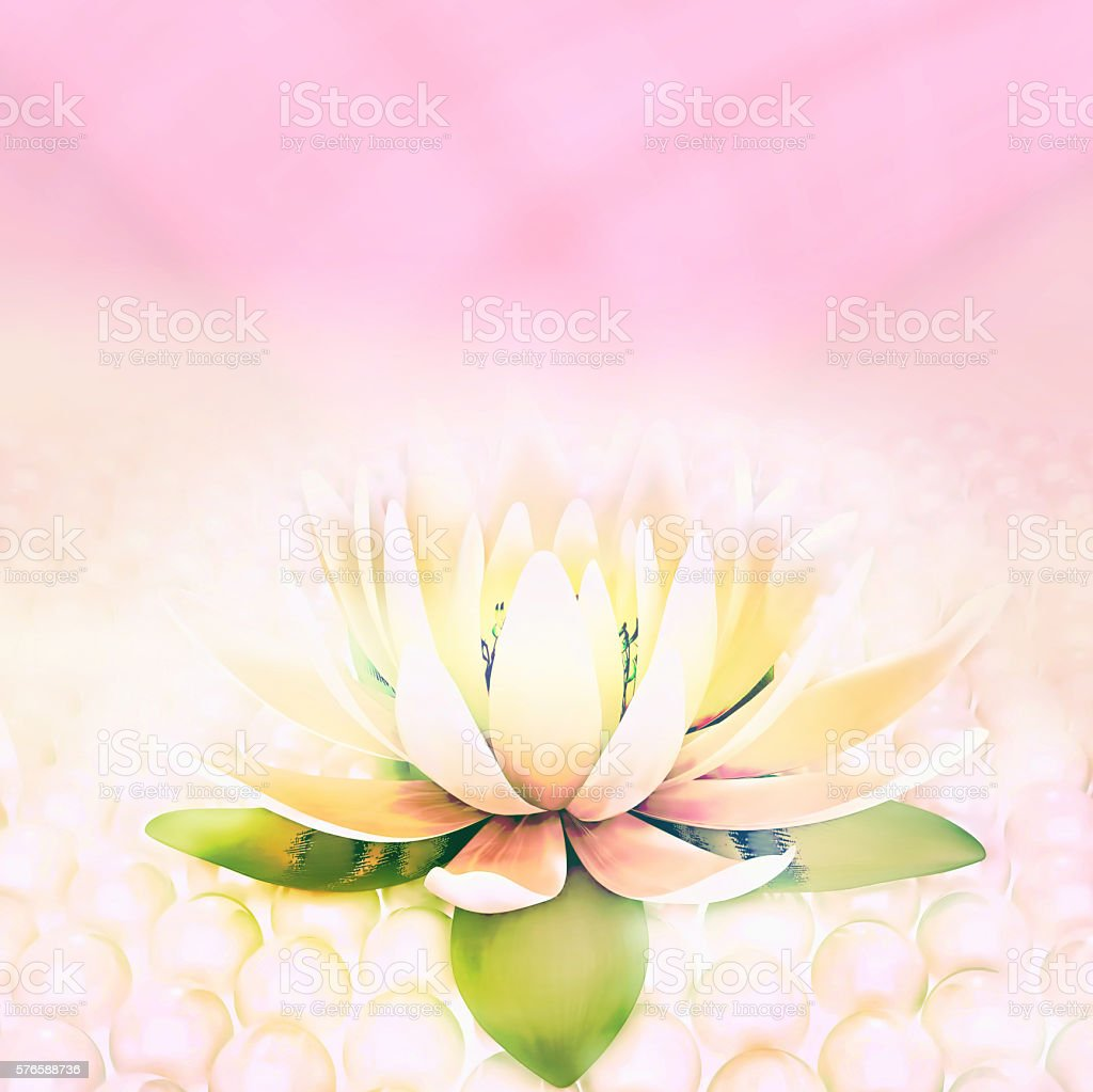 Lotus and pearls. stock photo
