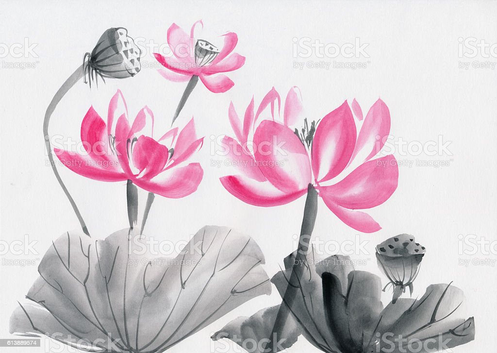 Lotus Flower watercolor painting stock photo