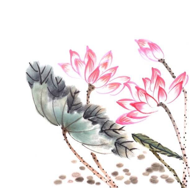 lotus blumen von hand gezeichnet mit tinte, chinesische aquarell malerei - lotus zeichnung stock-fotos und bilder