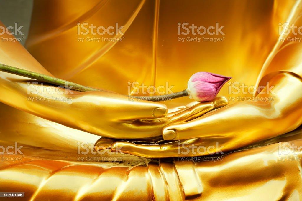 Lotus in hand image of buddha stock photo