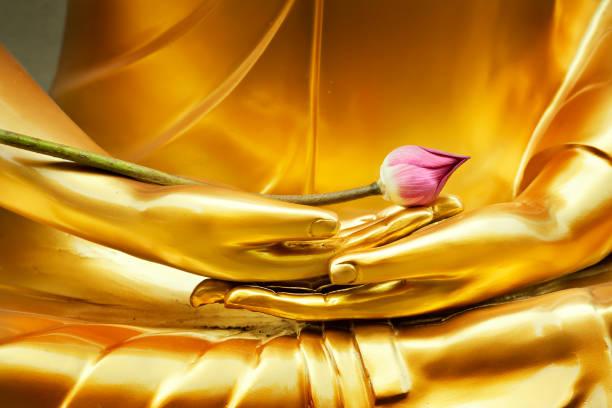 lotus in hand afbeelding van boeddha - buddha stockfoto's en -beelden