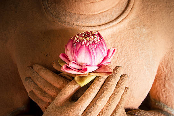 lotus in the hands of sandstone buddha. - buddha stock-fotos und bilder