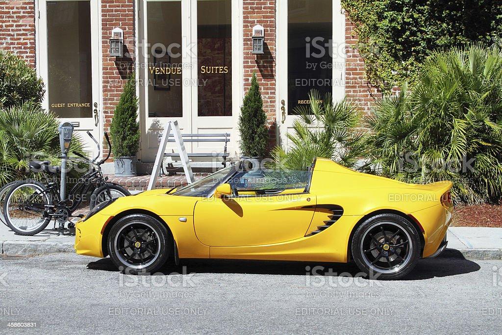 Lotus on Charleston street. royalty-free stock photo
