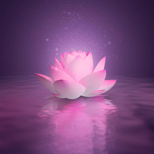 Cтоковое фото lotus