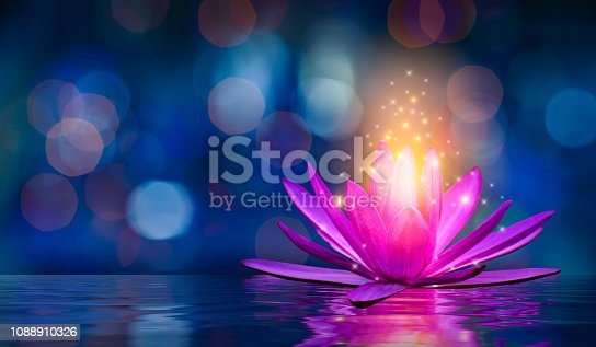 istock lotus Pink light purple floating light sparkle purple background 1088910326
