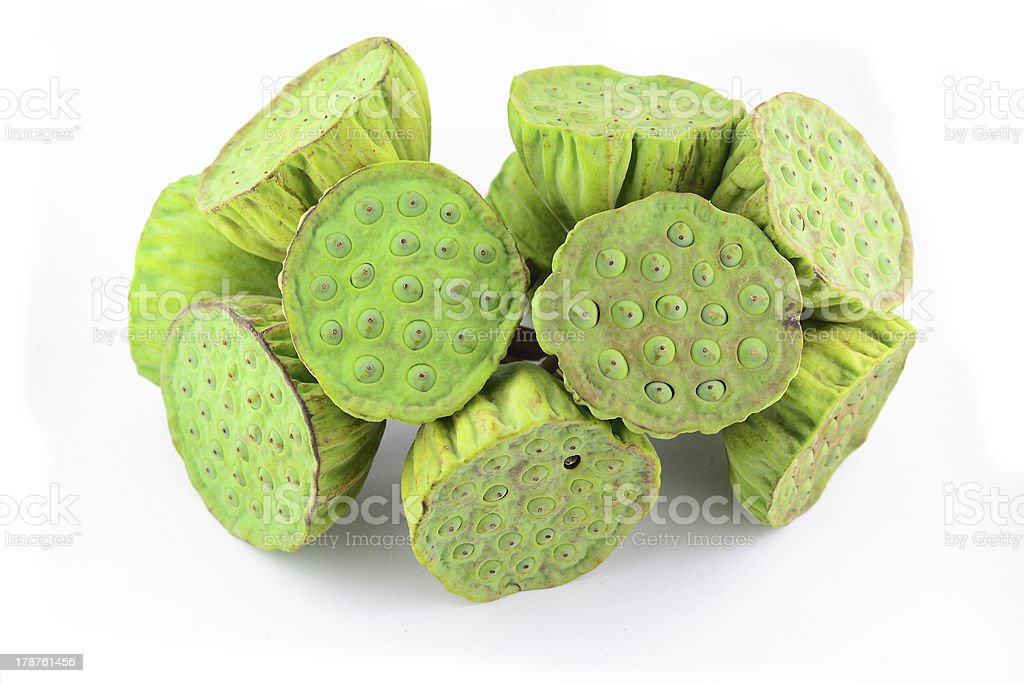 Lotus seed pods in isolated white background royalty-free stock photo