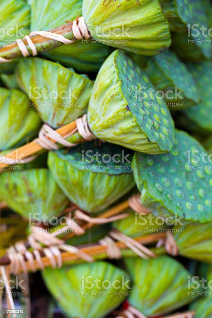 Lotus Seed Pods stock photo