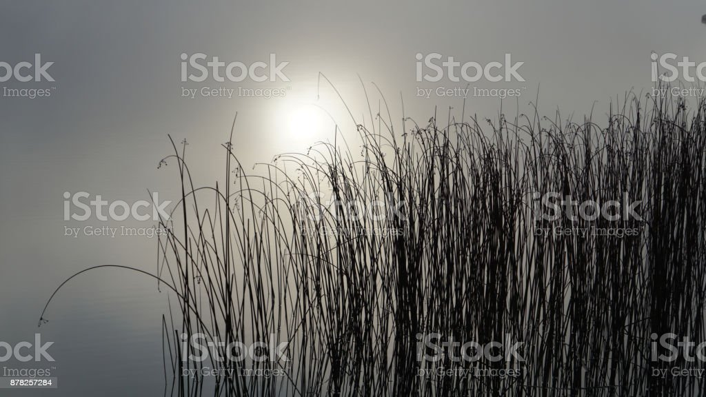 Lough Derg, Shannon River, Ireland stock photo