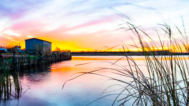 Louisiana Bayou Sunset stock photo