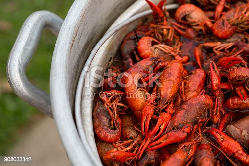 Spicy Crawfish Boiling in a Stock Pot in Louisiana