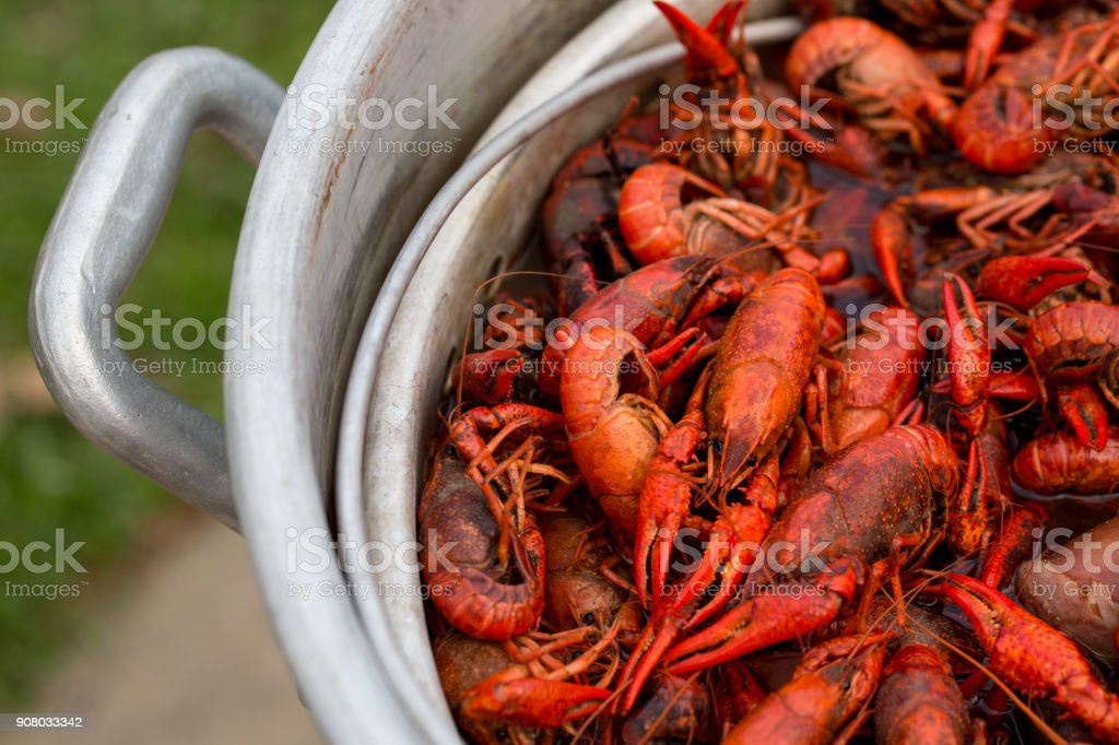 Louisiana Crawfish Boil stock photo