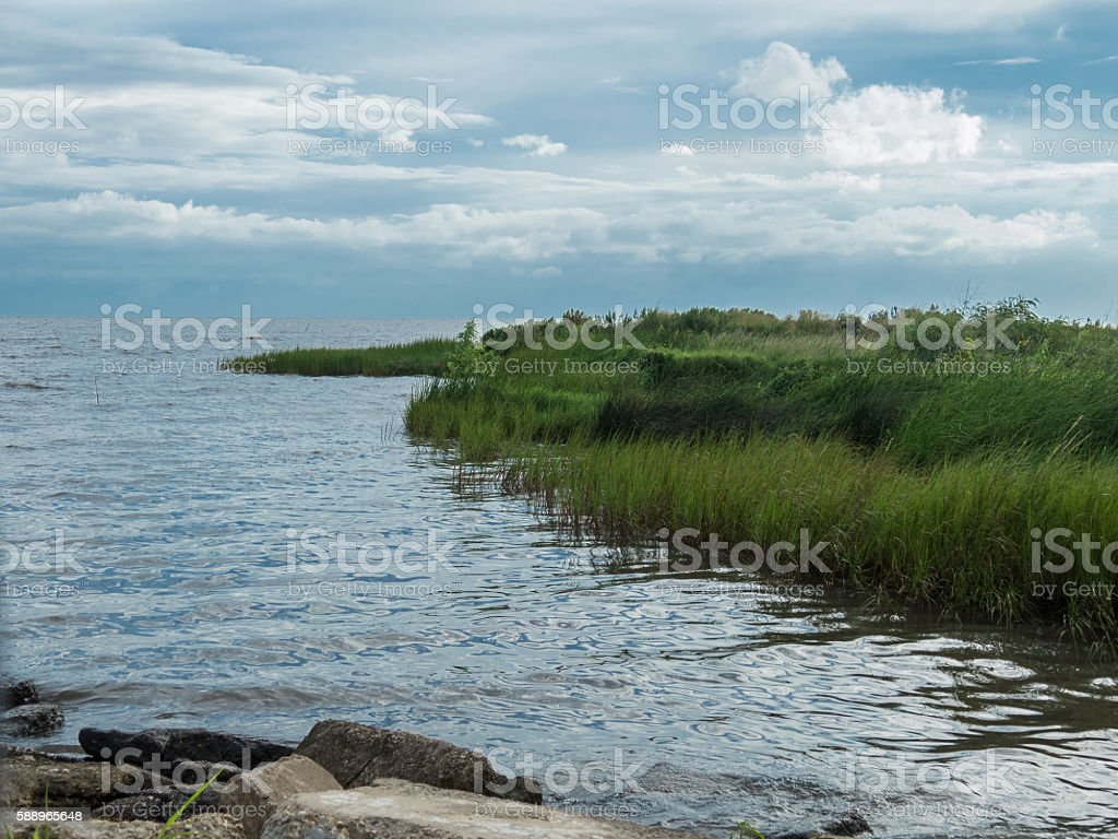 Louisiana Shoreline stock photo