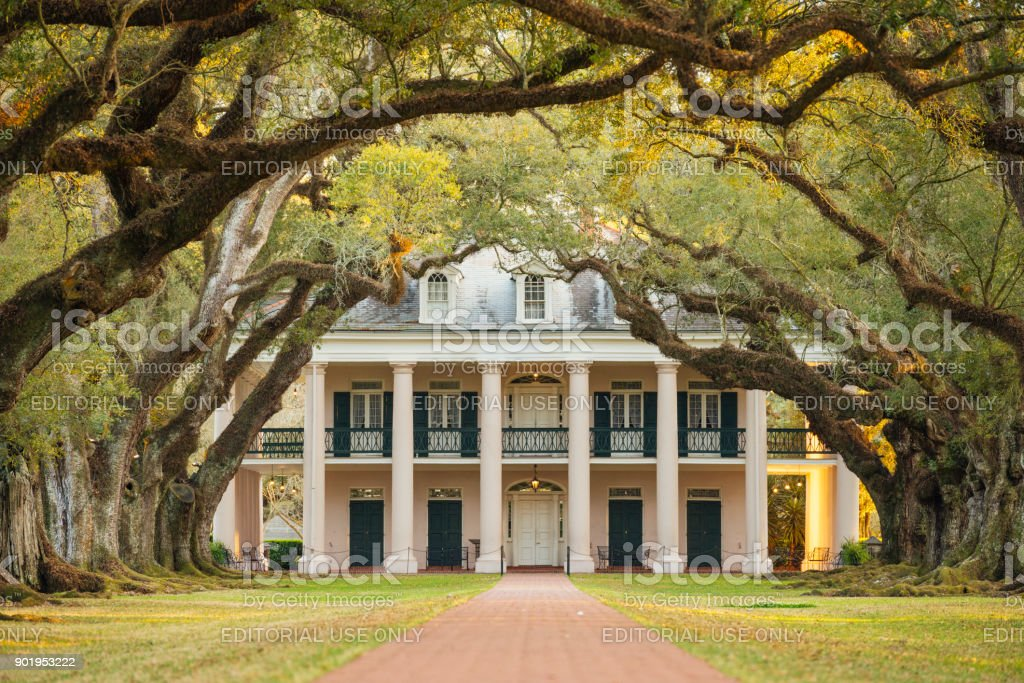 Louisiana Southern Oak Alley Plantation Architecture with Tree Canopy stock photo