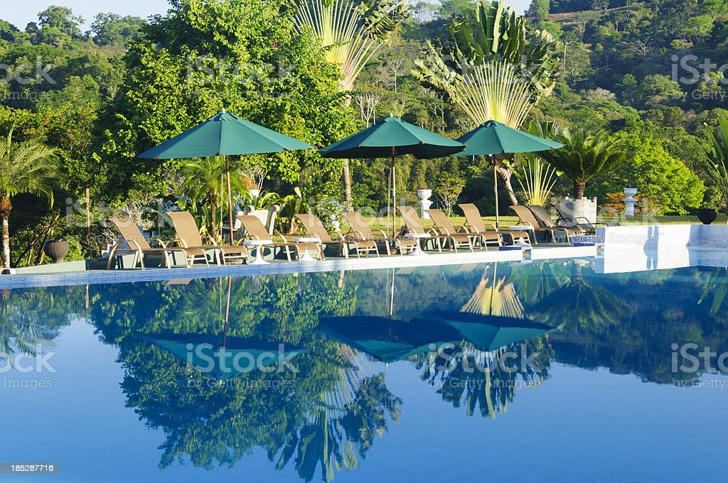 Lounge chairs and umbrellas poolside at a tropical resort stock photo