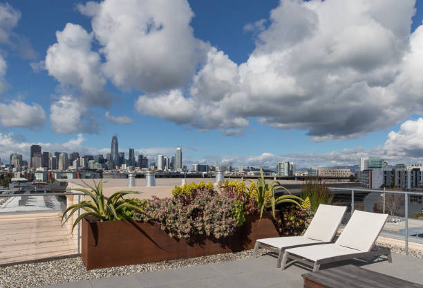 Lounge chairs with San Francisco skyline view stock photo