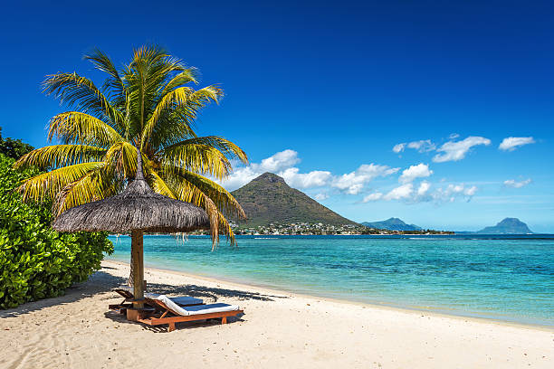 loungers and umbrella on tropical beach in mauritius - golf sommar skugga bildbanksfoton och bilder