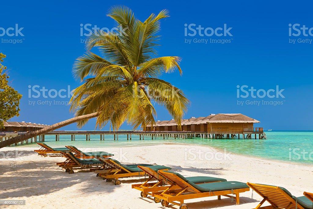 Leżakami na plaży w Malediwy zbiór zdjęć royalty-free