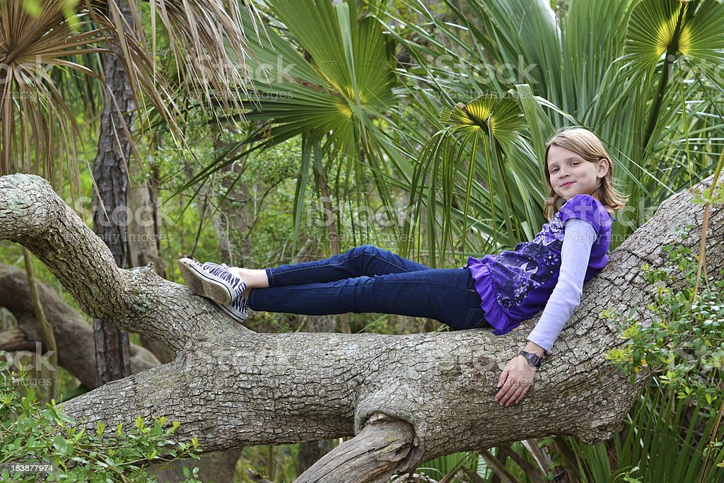 Lounging in a tree royalty-free stock photo