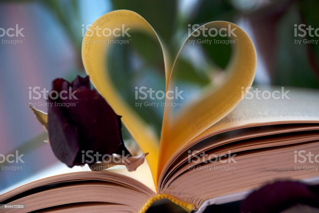 Love and book stock photo